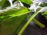 Spinat mit Feta überbacken