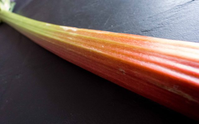 Rhubarb The Red