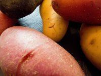 Kartoffel-Kohlrabi-Eintopf