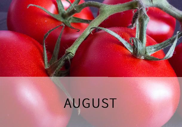 Rezepte August