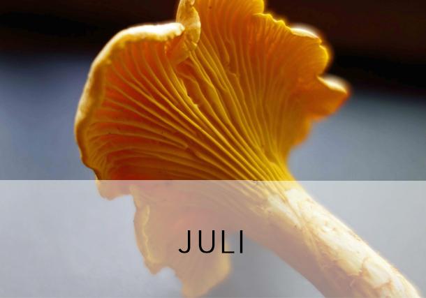 Rezepte Juli