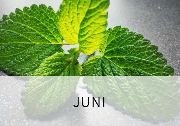 Rezepte Juni