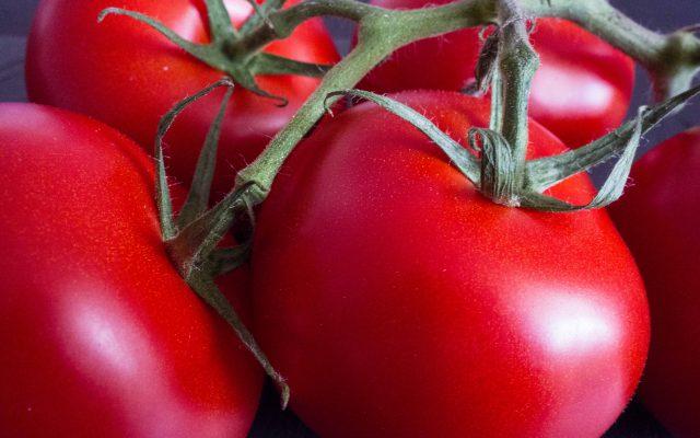 Tomaten-Thunfisch-Salat